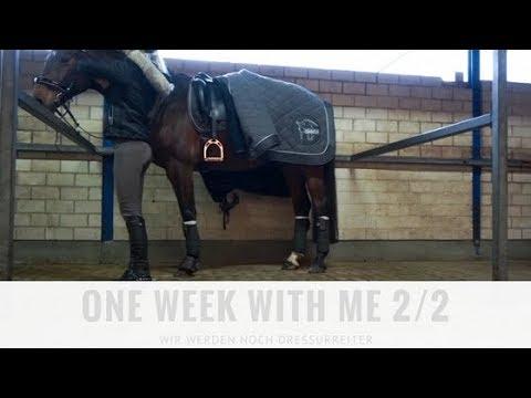 One Week With Me (2/2) - Reiten, Sport, Spazieren | PIA