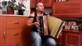 Владимир Бажиновский - Милая моя (Игра на баяне)