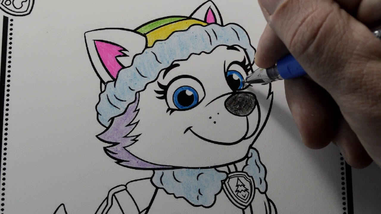 Como Pintar Everest Patrulla Canina Paw Patrol Paint Everest