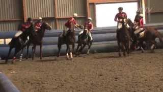 Horseball & Conseil vétérinaire: le poids de vôtre cheval