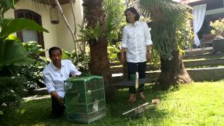 kehidupan Jokowi di Rumah Solo jokowijklive.com