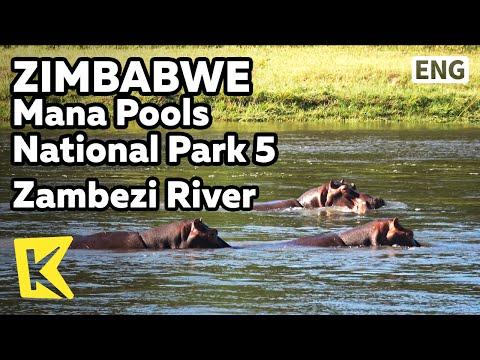 【K】Zimbabwe Travel-[짐바브웨 여행]마나풀스 국립공원 5 잠베지 강에서 만난 하마/Zambezi River/Canoe/Unesco