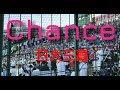 【Chance】【 歌詞付き】 日大三高 応援歌 チャンステーマ 2018甲子園 ブラスバンド