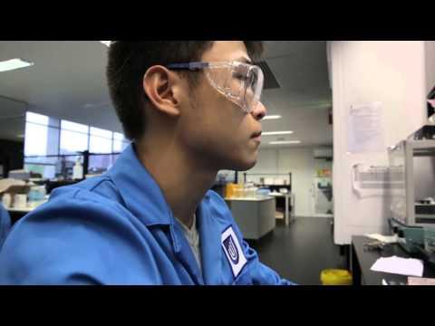 Julian & Wee's Pharmaceutical Science internships