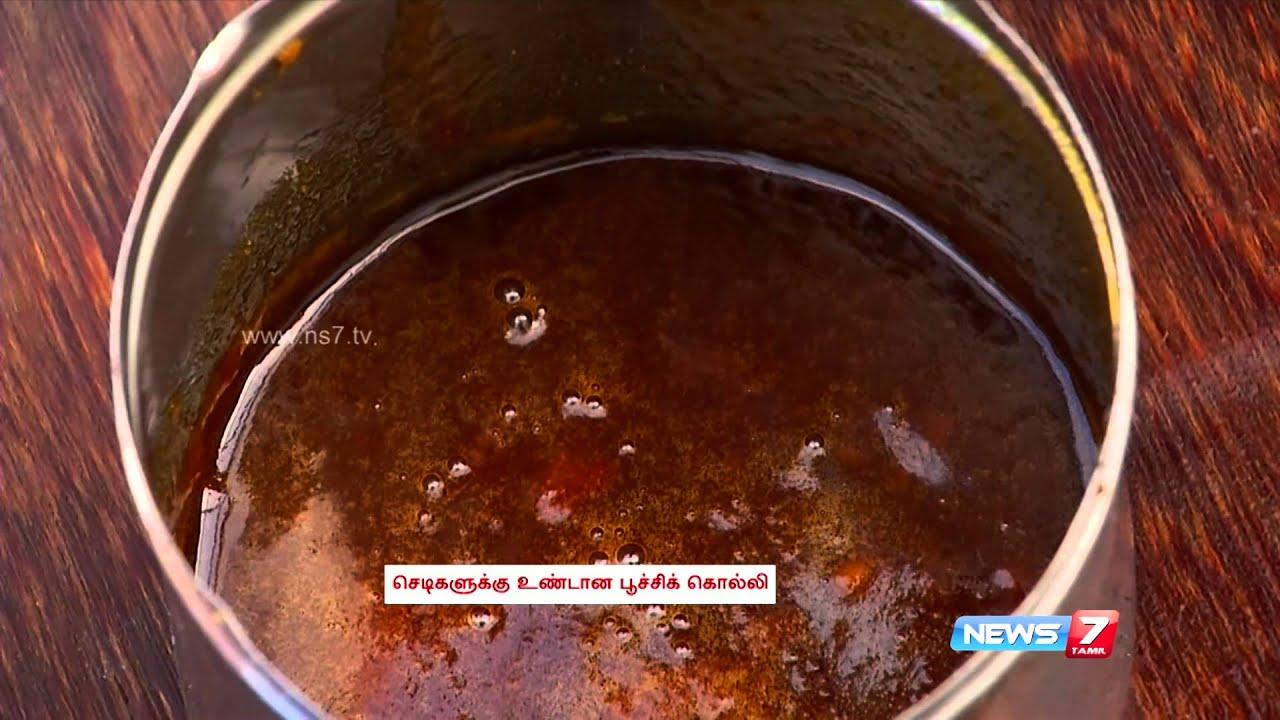 Homemade organic pesticide meen amino amilam and vembu karaichal poovali news7 tamil - Homemade organic pesticides ...