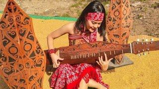 Instrumen musik Sape#instrumenmusik#rossysape#