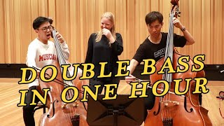 We Try Learning Double Bass in 1 Hour