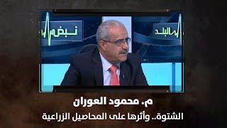 م. محمود العوران - الشتوة.. وأثرها على المحاصيل الزراعية
