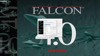 Como INSTALAR e CONFIGURAR o Falcon BMS 4.33 PT-BR