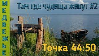 Русская Рыбалка 4 - Карп и амур на оз.Медвежье!