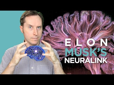 My 3 Big Takeaways From The Wait, But Why Post On Elon Musk and Neuralink | Answers With Joe