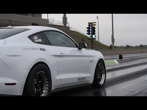 Armageddon Turbo Mustang Runs The 6r80 Class!