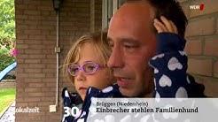 Lokalzeit am Samstag   Lokalzeit   Sendungen A Z   Video   Mediathek   WDR