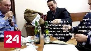 Главного охотника Оренбуржья уволили за стриптиз и поклеп на чиновничество - Россия 24