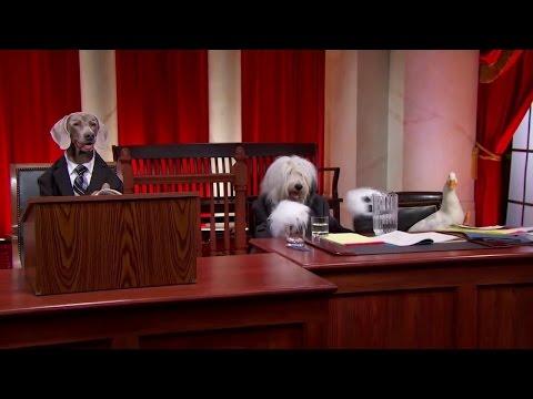 Ryan v. Gonzales: Oral Argument - October 09, 2012