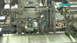 Pesadora full-automatica para puerros, cebollines o apio, Strauss verpackungsmaschinen, svsagro.cl