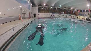 Diving Pool Session Time Lapse Thumbnail