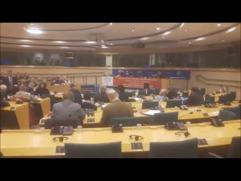 Conference of Communist & Worker's Parties 2017 in Brussels