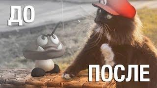 [До & После] Кот Марио