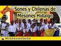 Video de Mesones Hidalgo