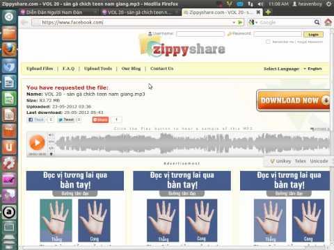 Hướng dẫn post nhạc DJ zippy vào rum namdan24h.com