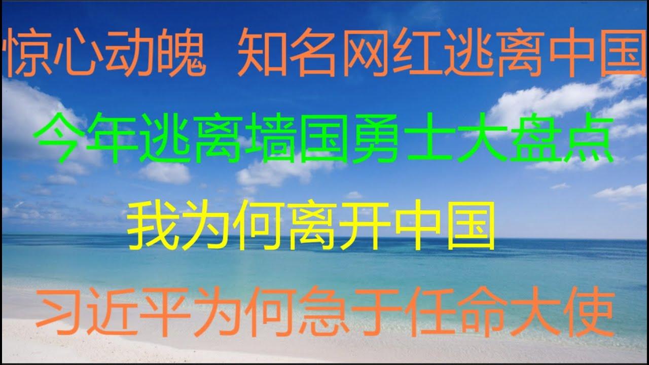 财经冷眼:惊险,知名网红逃离中国!今年逃离墙国勇士们大盘点!我为何离开中国?习近平为何急于任命大使?(20210730第590期)