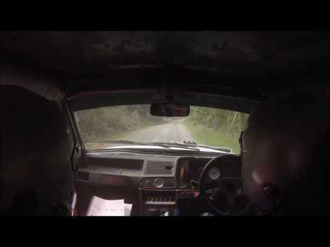 Ellis Belton / Gwynfor Jones - Severn Valley Stages 2016 - Stage 2