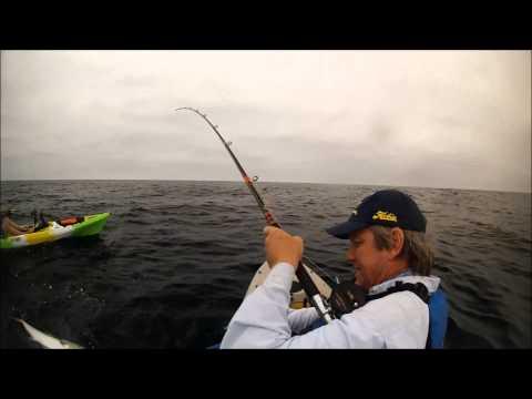 Yellowtail fishing at la jolla kelp 7 15 2015 youtube for La jolla fishing