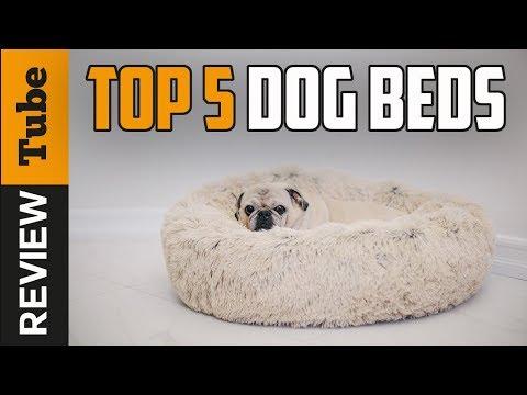 Aspca Dog Bed Dog Bed