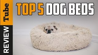✅Dog Bed: Best Dog Bed 2018 (Buying Guide)