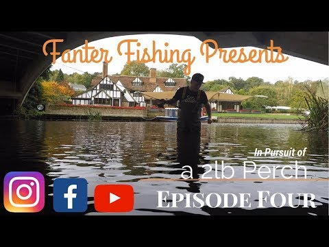 Fanter Fishing Episode 4 Pursuit Of A 2lb Perch LOADS CAUGHT On Suffolk Dedham River Stour Plus Pike