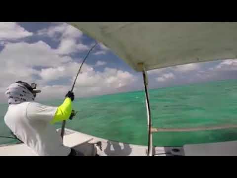 Gt plugging Kiribati