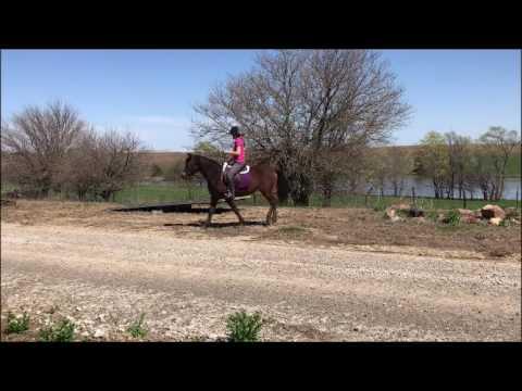 Harmony: Riding
