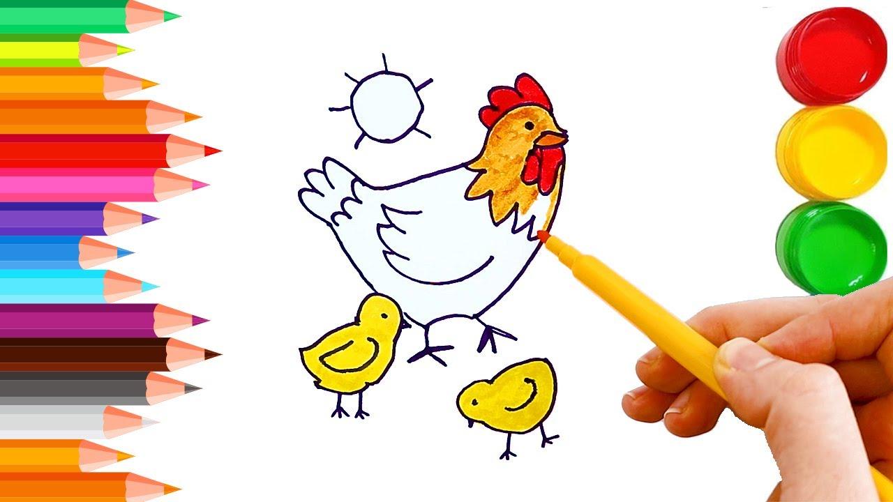 Tavuk Ve Civciv Boyama Cizgi Film Karakterleri Renkleri Ogren