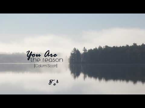 [Vietsub + Lyrics] You Are The Reason - Calum Scott