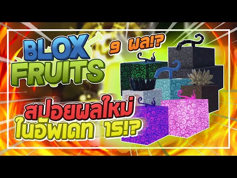 Roblox: Blox Fruits อัพเดท 15 ผลใหม่ที่จะมาทั้ง 9 ผล!? โชว์สกิลผลพระตื่น! ระบบแลกเปลี่ยน!! GAMEPASS?