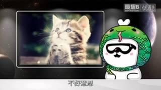TOP YB 特別篇 最耀B身世 (最耀b 2013年2月新年特輯)