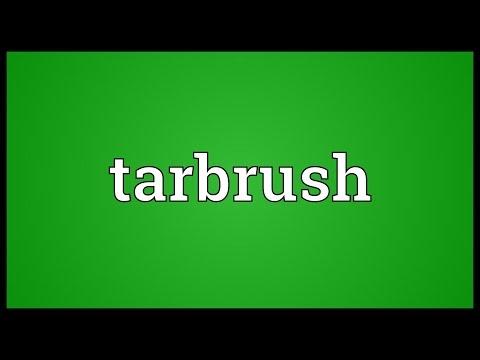 Header of tarbrush