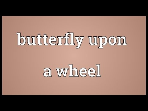 Butterfly upon a wheel Meaning