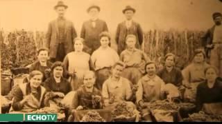 Világ-panoráma: A magyarországi németek, svábok kálváriája 1945-1948, III. rész - Echo Tv