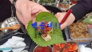 [캠핑요리/먹방]백순대!!깻잎에다가 싸먹음 끝장남ㅋ/막…