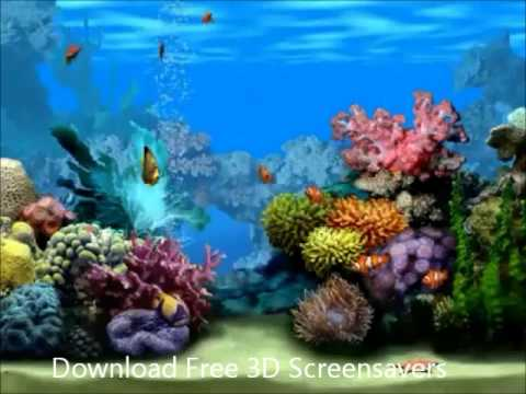 3d Moving Fireplace Wallpaper 3d Screensavers In Hd Aquarium Fireplace Fish Tank Hd