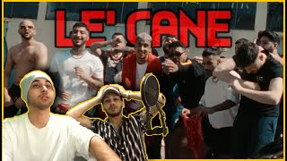 BU EKİP BAYA OLMUŞ !!! 🚨🎤 | MUTİ - LE CANE feat. UZİ x CRİTİCAL x HEİJAN | REACT