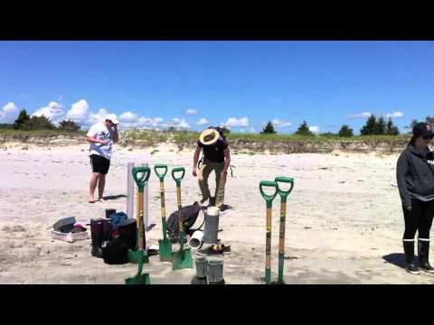 Intertidal Ecology 2014