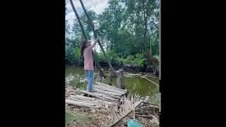Китайская ловля рыбы сетью пауком