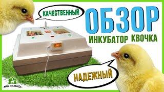 Ламповый инкубатор Квочка на 70 яиц