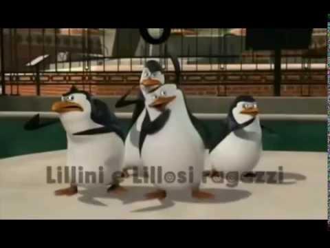 Il pinguino lillino