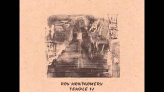Roy Montgomery - Above The Canopy