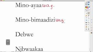 Ojibwe Language Lesson VAI suffix -wag