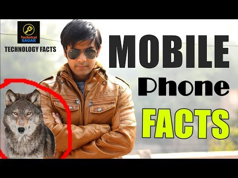 Wolf Vs Mobile Phone ? | Mobile Phone Facts | Interesting Things You Should Know